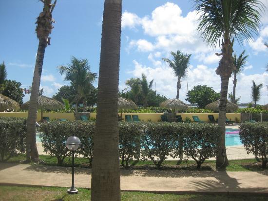 Alamanda Resort: pool