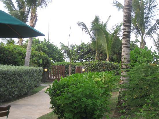 Alamanda Resort: outside