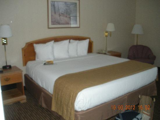 Quality Inn Oakwood: King Bed