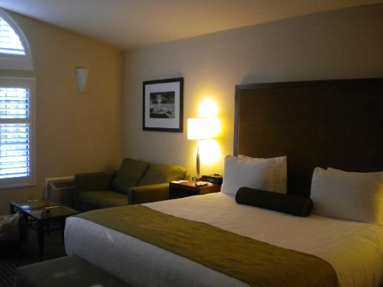 Best Western Plus Stevenson Manor: Great room!!!