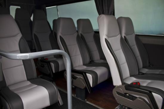Nst Santorini Tours: 13 seater mini van