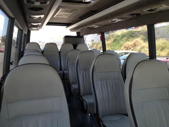 Nst Santorini Tours: 17seater mini bus
