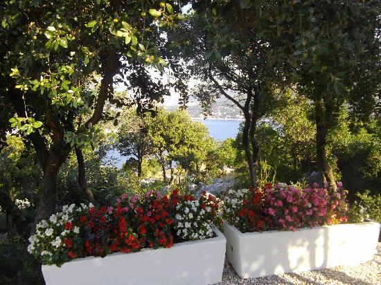 Valamar Argosy Hotel: une vue du solarium...