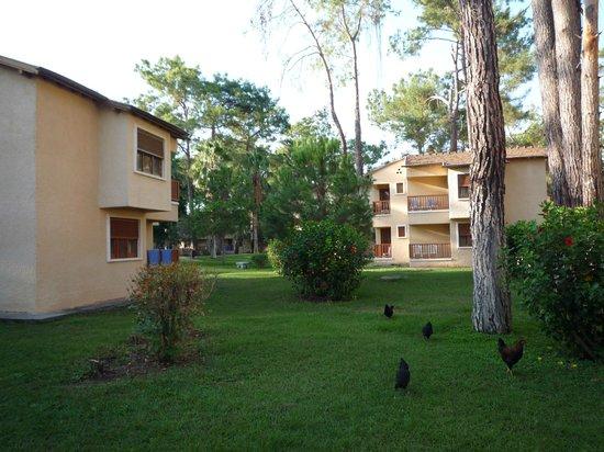 Club Marmara Kimeros Hotel: le village