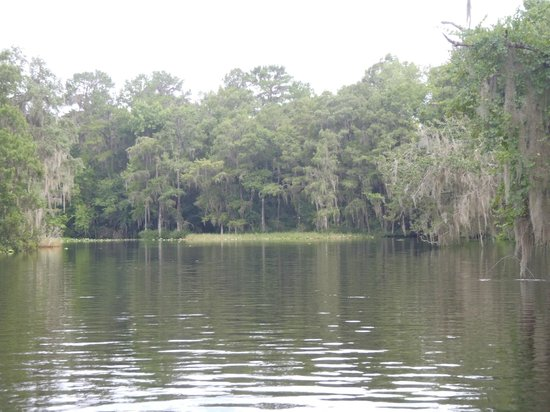 Welcome sign picture of lake rousseau rv fishing for Crystal river fl fishing report