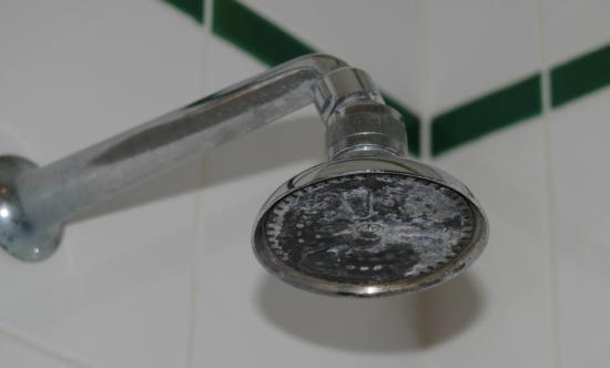 Hotel Indipendenza: shower