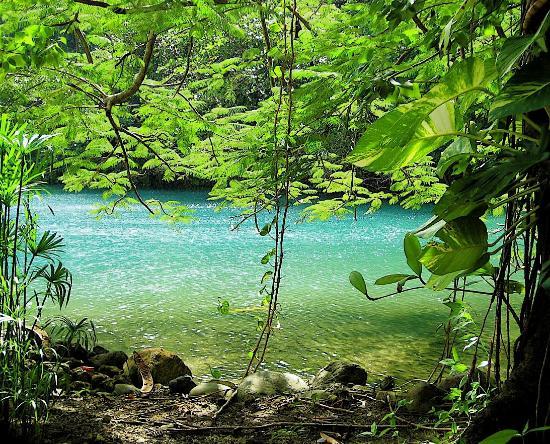 Goblin Hill Villas at San San: The Blue Lagoon cenote, a few minutes' walk away