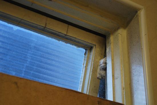 Avondale House: Fenêtre bis