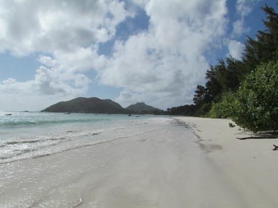 Paradise Sun: Spiaggia bianca