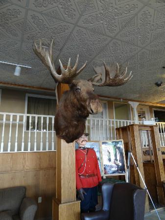 Best Western Gold Rush Inn: ロビー