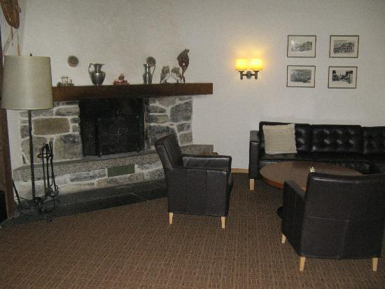 Hotel Jungfrau: Fireplace in lounge area