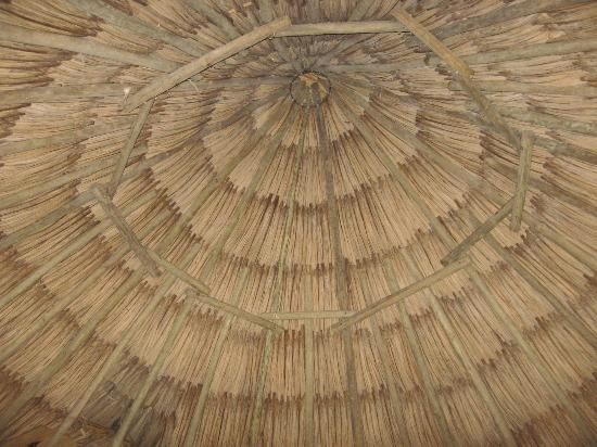 Macaw Bank Jungle Lodge: Beautiful thatched roof inside