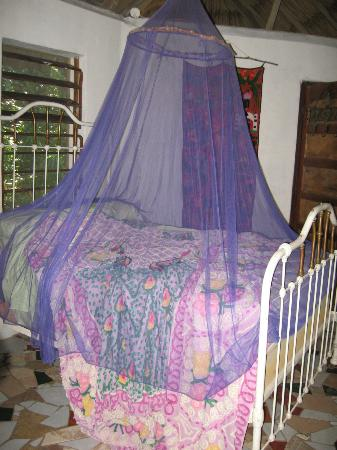 Macaw Bank Jungle Lodge: Bed with pretty mosquito net