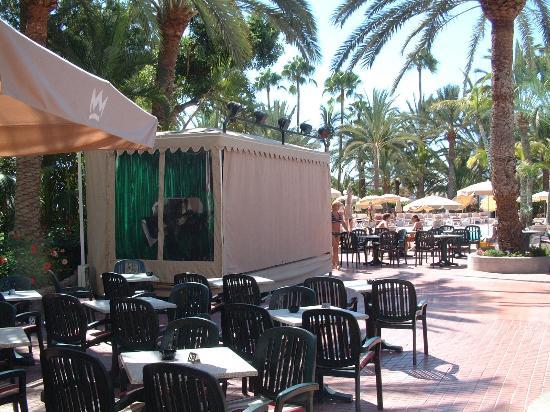 Aparthotel Riu Flamingo: Pool Side Stage area - Entertainment Nightly