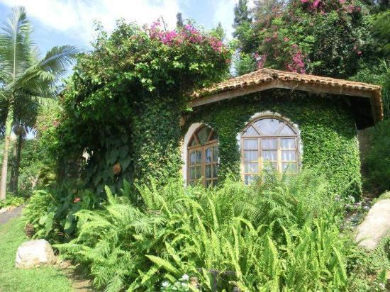 Palm Garden Resort: bungalow