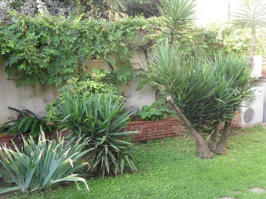 Emily's Rooms: jardin