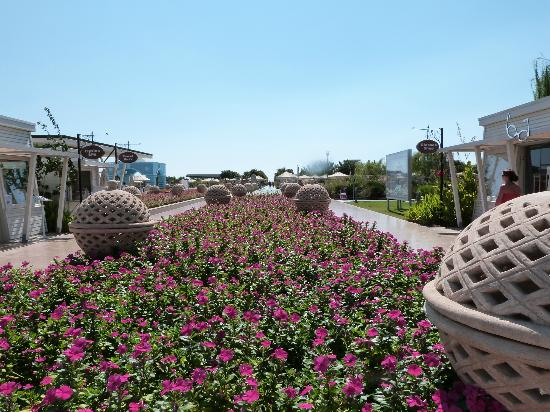 Hilton Dalaman Sarigerme Resort & Spa: Beautiful flower beds