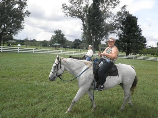 Bar-B-Ranch: Quasar & me