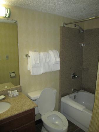 Residence Inn Houston Medical Center/NRG Park: First Floor Bathroom
