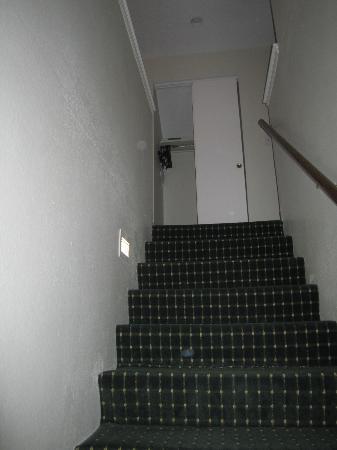 Residence Inn Houston Medical Center/NRG Park: Stairs to Second Floor