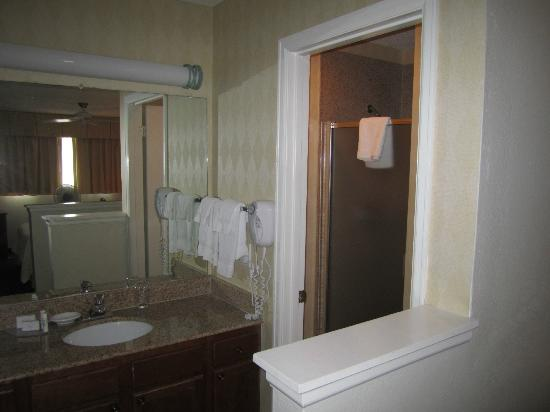 Residence Inn Houston Medical Center/NRG Park : Bathroom on Second Floor