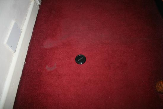 Cedar Lodge Hotel: Just one of the 'patches' of stain on the carpet