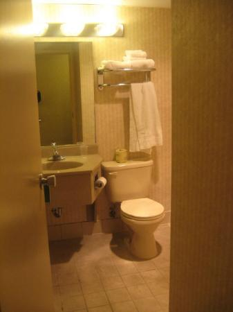 Sawmill Inn of Grand Rapids: Bathroom