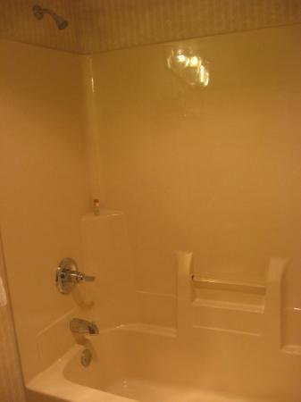 Sawmill Inn of Grand Rapids: Bathtub