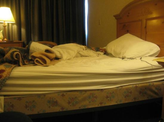 Sawmill Inn of Grand Rapids: Beds