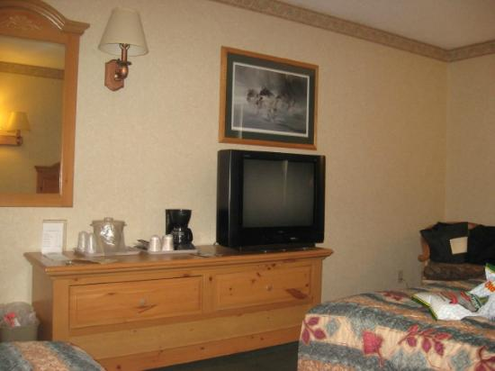 Sawmill Inn of Grand Rapids: TV