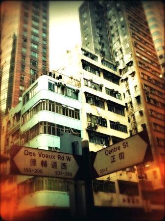 آيلاند باسيفيك هوتل: Lovely buildings found around the hotel