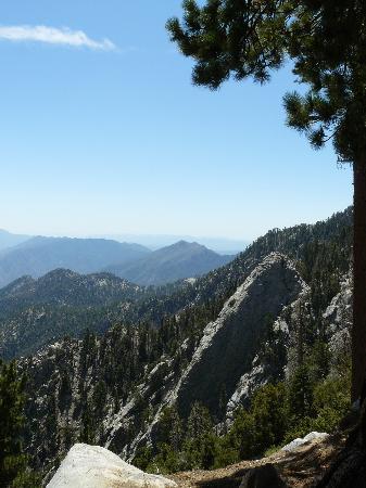 San Jacinto Mountain: View from San Jacinto