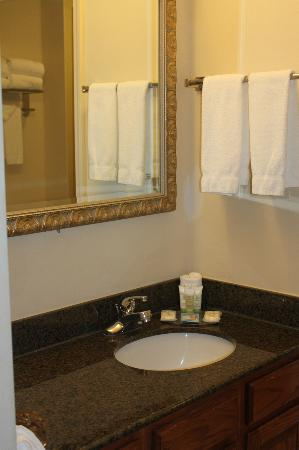 Staybridge Suites Davenport : vanity