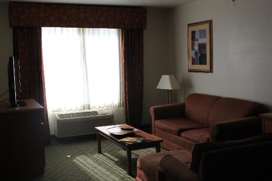 Holiday Inn Express & Suites Omaha West: Lounge Area