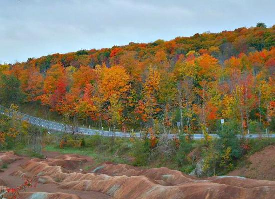 Caledon, Canada: Autumn-Best time to visit Badlands to see the Fall Colours