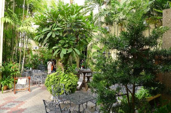 Hotel Puri: More Puri