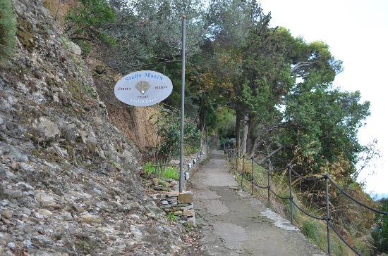 Storica Residenza StellaMaris : Ingresso