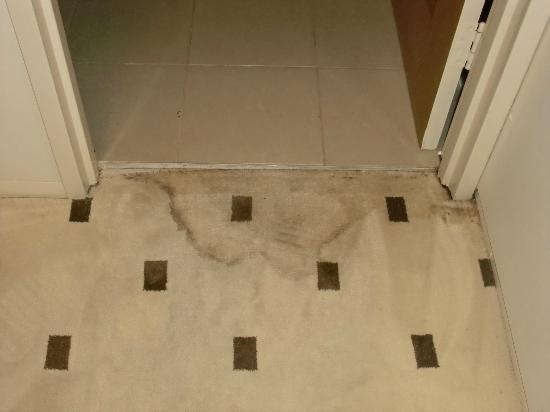 ‪‪Platinum Bargara Apartments‬: Rug in front of master bathroom-ants not very visable