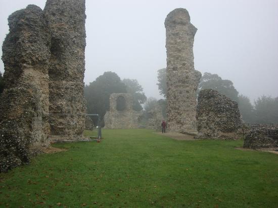The Abbey: The transept of St Edmunds Abbey Church