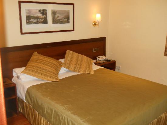 โรงแรมเบสเวสเทิร์นคาร์ลอส: Room