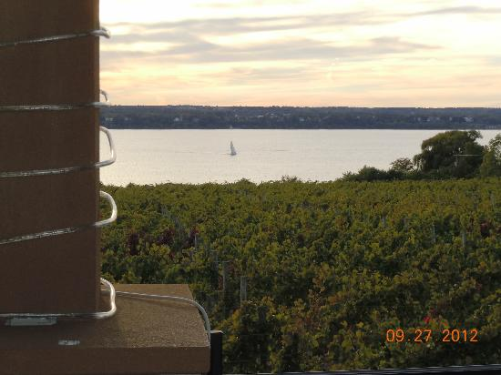 Ventosa Vineyard: View from terrace