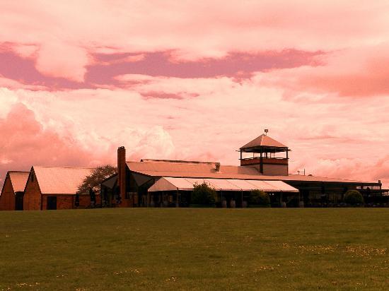Rochford Wines Yarra Valley: Rochford Restaurant