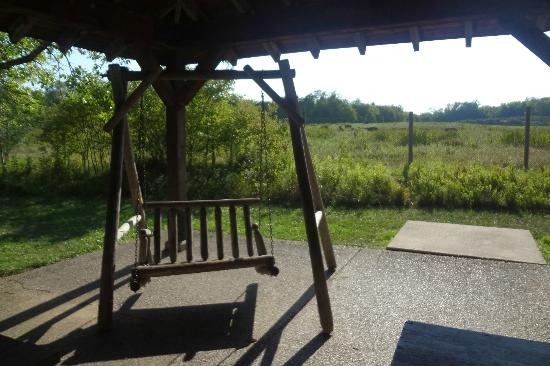 Wildlife Prairie Park: picnic shelter and swing outside cabooses