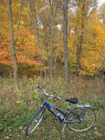 Root River: Fall colors along the trail