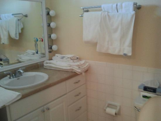 Oceanfront Litchfield Inn: bathroom
