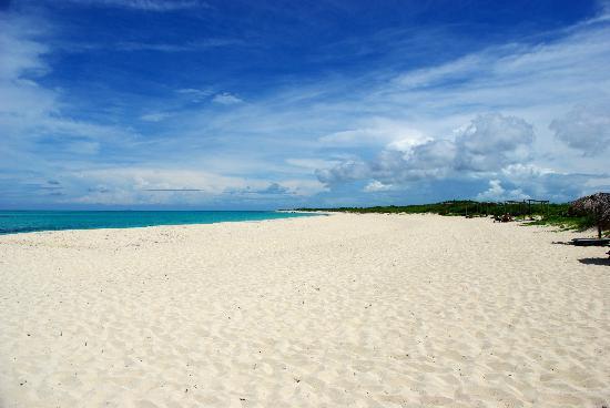 Melia Buenavista: Grande plage