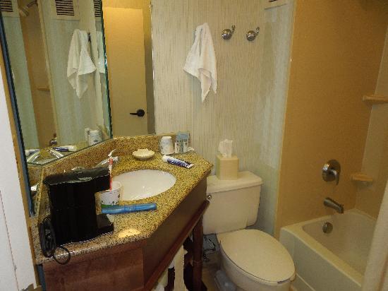 Hampton Inn Ft. Lauderdale - Cypress Creek: Baño de la habitacion