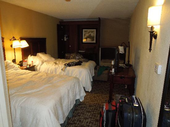Hampton Inn Ft. Lauderdale - Cypress Creek : Habitacion