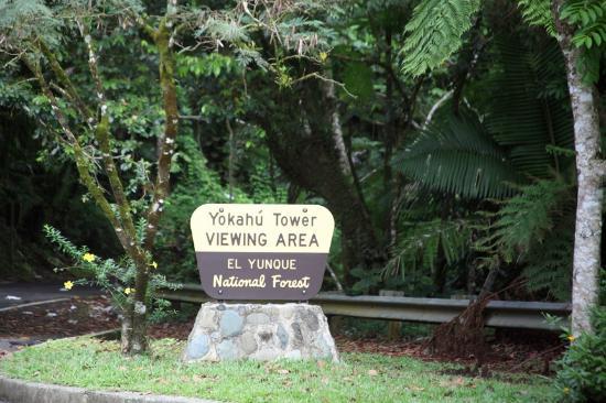 Yokahu Observation Tower: Entrance Sign