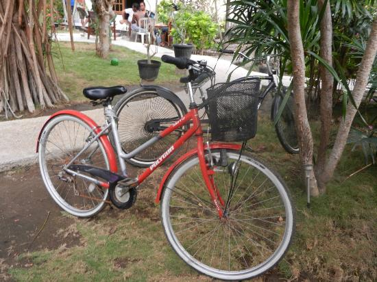 Black Sand Homestay: Bikes for rent